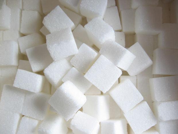 סוכר הופך אותנו לטיפשים?