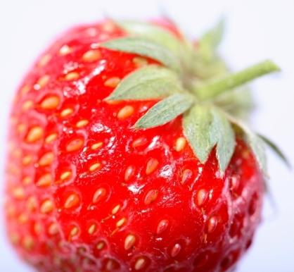 תותים עשירים בנוגדי חימצון