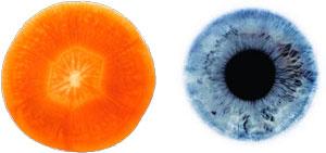 גזר והעיניים