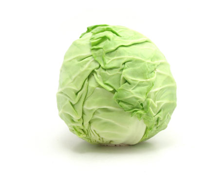 550010e825a0a-cabbage3-clean-lg