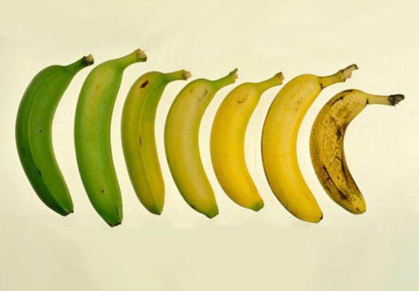 העמילן בבננה הופך לסוכר ככל שהבננה מבשילה