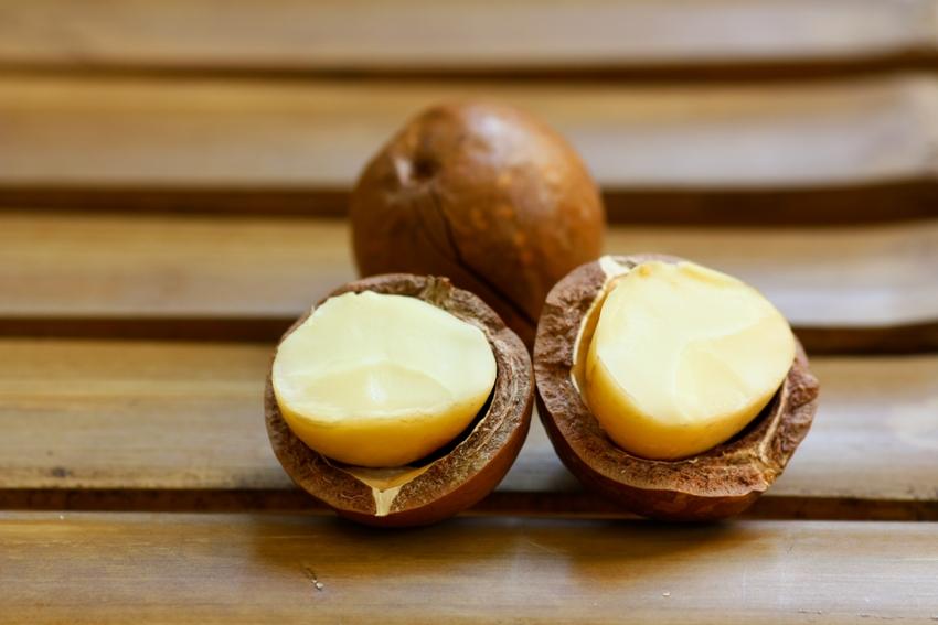אגוזי מקדמיה טובים להרזיה