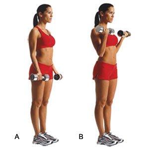 תרגיל לשריר הזרוע
